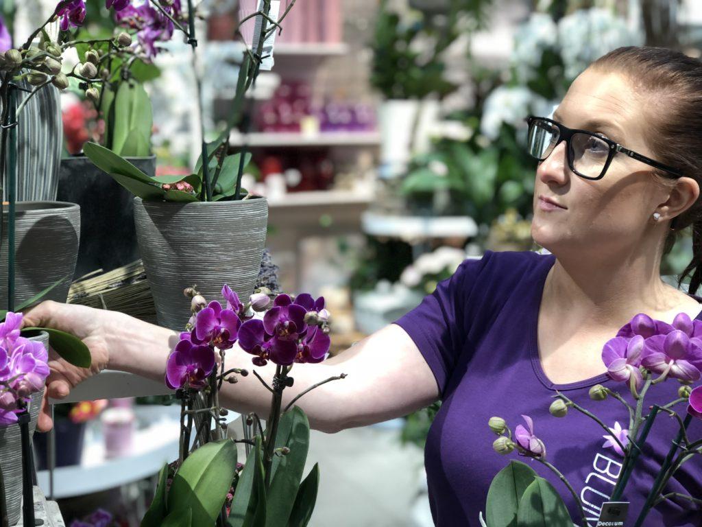 Florist med orkidé